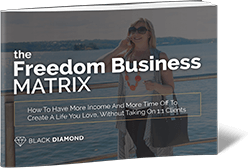 Samantha-Riley-The-Freedom-Business-Matrix-3D-cover